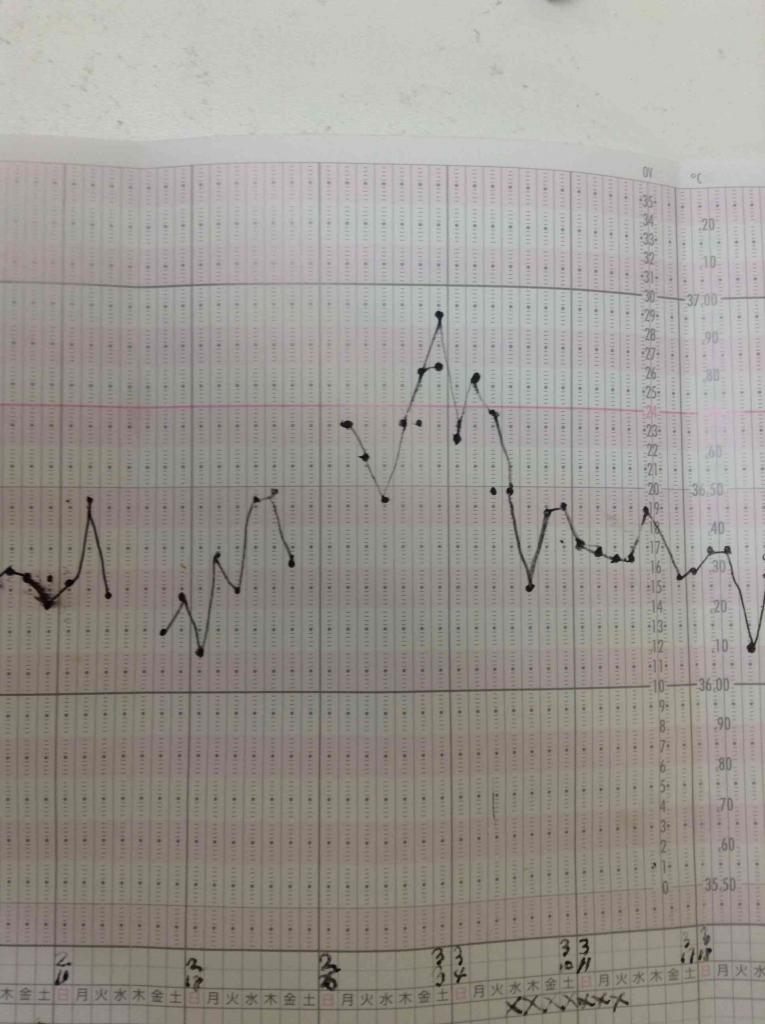 血虚の基礎体温2