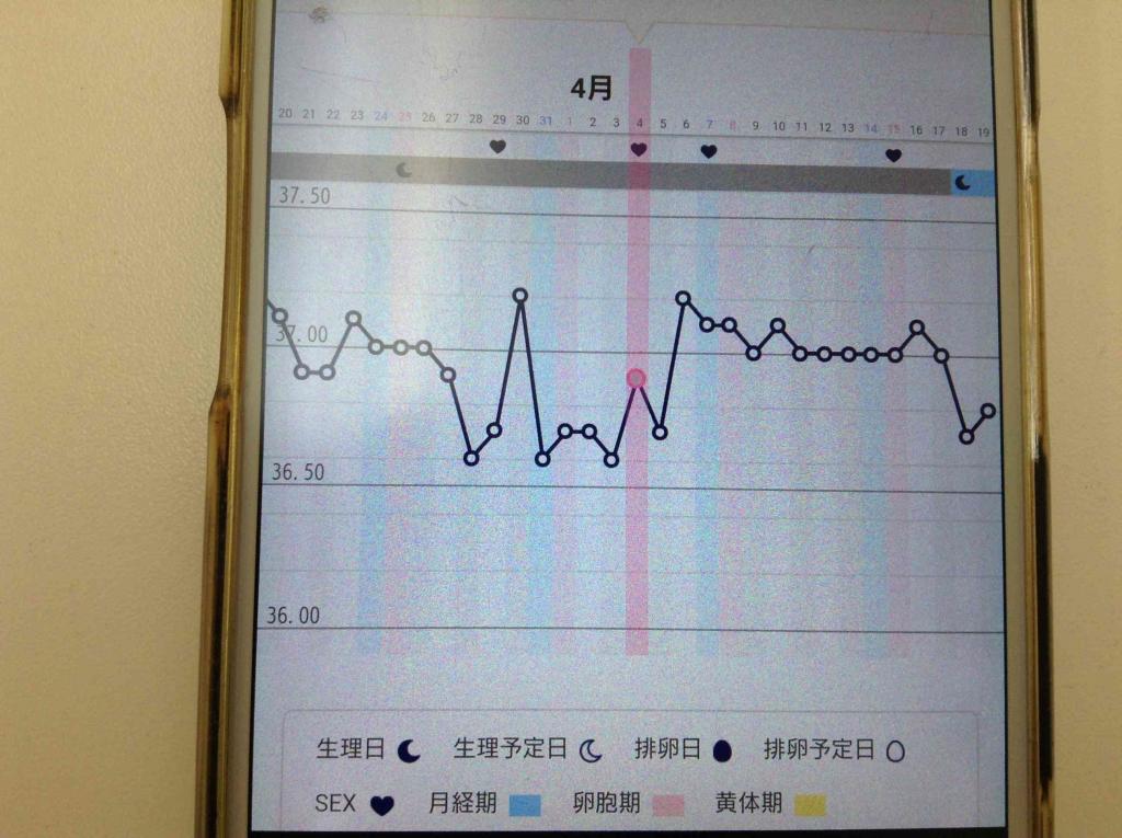 腎虚の漢方薬に変更後の基礎体温
